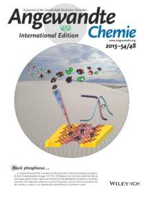Angew. Chem. Int. Ed. 2015, 54, 48