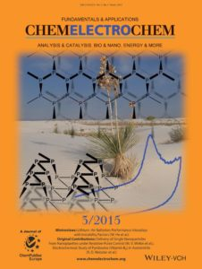 ChemElectroChem, 2, 324